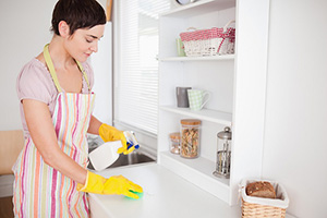 Kitchen Cleaning Tips 101