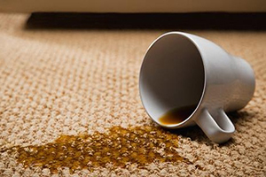 Carpet Stain Solutions